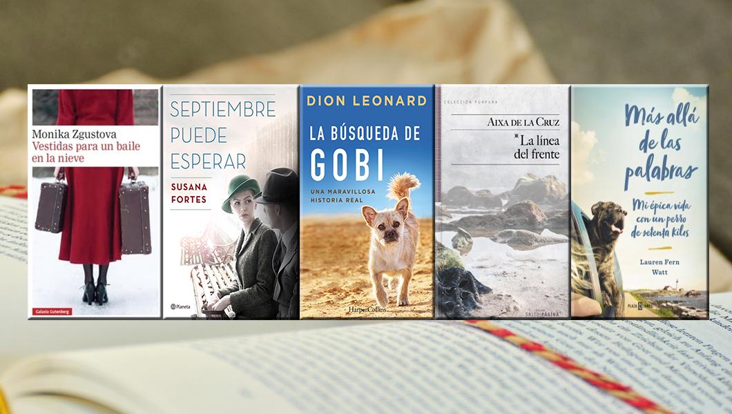 cinco-libros-para-se