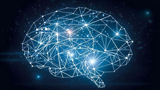 el-cerebro-del-futur