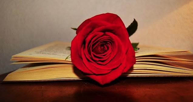 diez-frases-para-celebrar-el-dia-del-libro